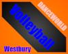 Westbury Academy Vnet