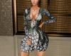 Silvery Dress RLL