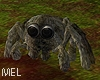 Mel*Halloween Spider an.