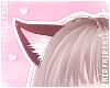 F. Kitten Ears Cherry