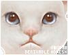 � Avatar Kitty Drv