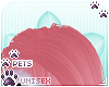 [Pets]Jura | head spikes