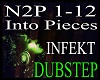 *n2p - Into Pieces REQ