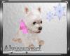Cotton Candy Puppy