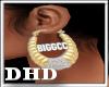 eBIGGCCe