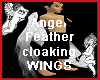 Angel Feathers  C Wings