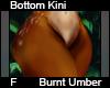 Burnt Umber Bot Kini F