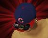 $UL$Cubs Hat