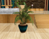 [AM] Potted Plant 6