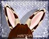 .M. CinnaBun Ears 2