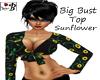 ~B~ Big Bust Sunflower