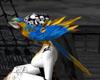 pirates parrot friend
