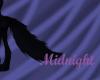 Midnight Tail