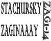 STACHURSKY - ZAGINAAAY