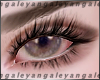 A | Welles eyeshadow