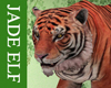 [JE] Tiger Pet