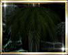 ♔K MR Hanging Plant