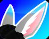 {s} Foxish Ears