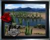 ~High Desert Riding Room