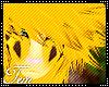 T|» Zirra Hair v4