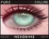 [HIME] Cheesecake Eyes