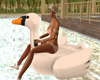 """SAV"" SWAN FLOAT"