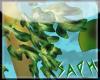 [SG] Leafy Dragon LLeaf