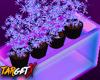 ✘ Glow Weeds