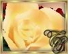 TC~ Single Yellow Rose
