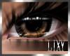 {LIX} Big Brown Eyes