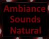 *Ambiance Fire Sounds