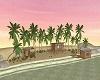 Beach Kiwi