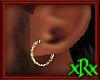 Gold Shimmer Earring M