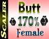 Butt / Hip Resizer 170%
