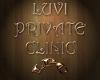 LUVI SILVER SATIN SLACKS