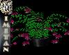 (MI) Plant Fucsia/Black