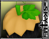 Pumpkin Hat [M
