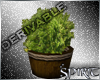 *S* Rustic Planter