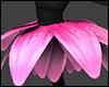 Lotus Ballerina