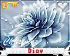 *D* Frost Flowers - Body