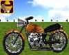 Tiger Animnated Motorbik