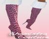Sham's Pink Stilettos