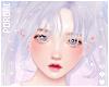 𝙿. Yuki Lilac