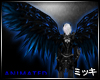 ! Night Luminous Wings