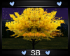 *SB* Tree V5