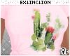 #cacti paradise