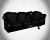 !Z! Black Couch