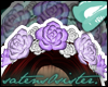 *S* Roses | Lilacs