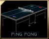 PING PONG BLUE TABLE