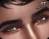 |Z| Senpai Eyebrows